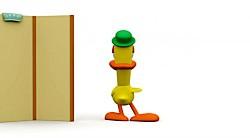 اردک ایرادگیر