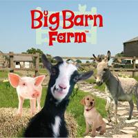 Big Barn Farm بیگ بارن فارم